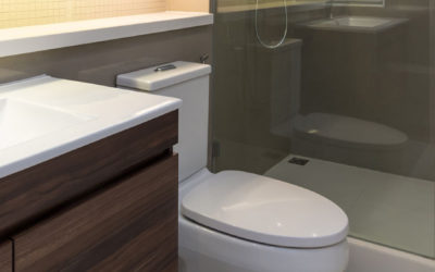 Deal Alert: Save Hundreds on New Toilet Installation – Limited Supply